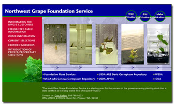Northwest Grape Foundation Services